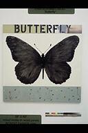 Western Blot No. 21 (Butterfly)