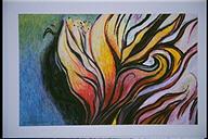 Llama Silvestre 1