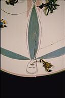 Transformation (made in memory of David Moreno, 1959-1988), (detail)