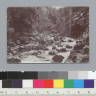 """Pluton River, view (n), 1898,"" University of California at Berkeley, Summer School of Surveying. [photographic print]"