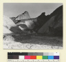Death Valley - Golden Canyon. (Manly Point in Distance.) [photographic print]
