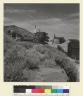Virginia City, Nevada. [photographic print]
