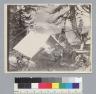 Three men sitting at campsite, Idaho trip. [photographic print]