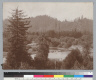 Landscape with river [Russian River?] and tree covered hills, Bohemian Grove. [photographic print]