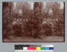 Paper lanterns over striped tent with seated man, Bohemian Grove. [photographic prints]