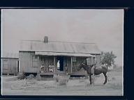 N. Carolina farms - general store, tobacco barn.