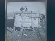 Cotton Pickers at Weigh Scales