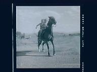 Horse play & Summer fun - water spraying