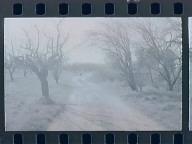 Winters, Gregor
