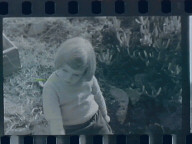 Lilly at Steep Ravine
