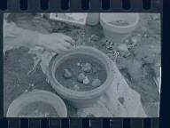 Fujie, Potting