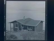1.) Cabin at Steep Ravine 2.) Tree