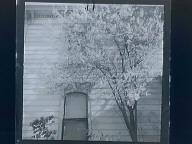 (house w/a tree)