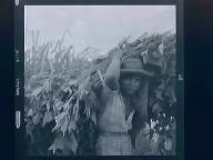Rural Venezuela