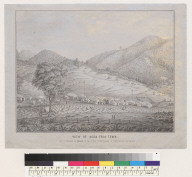 View of Agua Fria town [Mariposa County, California]