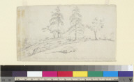 View near Auburn, Placer Co[unty], Cal[iforni]a