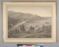Avalon, Santa Catalina Island, Cal[ifornia]