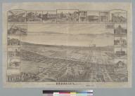 Bird's-eye view of Berkeley, Cal[ifornia] 1891