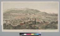 Calistoga Springs [Napa County, California] 1871