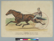 The Grand California Filly Sunol, record 2:10 1/2 at 3 yrs. old [horse]