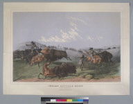 "Indian buffalo hunt: ""close quarters"""