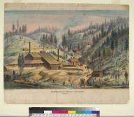 El Mira Silver Mining Co. works, Banner I[daho]T[erritory]