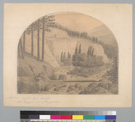 And an angler by a brook [Santa Cruz Mountains, California?]