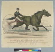 The grand horse St. Julien, the king of trotters