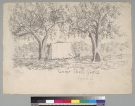 Camp Three Girls: Sonoma Co[unty] Cal[ifornia]