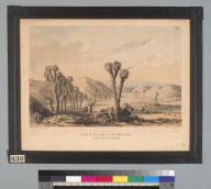 Valley in the slope of the Great Basin: leading from the Tejon Pass [California/Nevada]