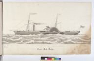 The Central America & California Steam Ship Company's Steamer Brother Jonathan