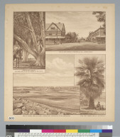 [Views related to Pioneer Land Company, Porterville, California]