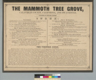 The Mammoth Tree Grove, Calaveras County, California, and its avenues [title page]