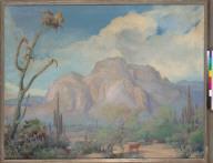 [Superstition Mountains, Arizona]