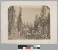 """""""Chile 1861,"""" rural scene. [photographic print]"""