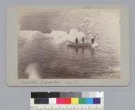 """Iceberg, Glacier Bay,"" Alaska. [photographic print]"