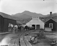 Mules pulling a coal car at Sutro Tunnel entrance. [negative]