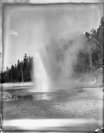 Geyser, Yellowstone National Park. [negative]