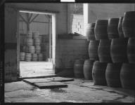 [Barrels, unidentified lacation.] [negative]