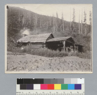 Cabin, Idaho trip. [photographic print]