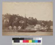 Anchorage of San Francisco Yacht Club, Sausalito. [photographic print]
