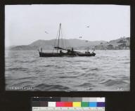 Chinese fishermen hauling nets on junk, San Francisco Bay. [photographic print]