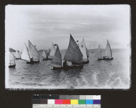 Sailing canoes off Sausalito [photographic print]