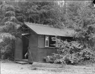 Cabin used as dark room, Bohemian Grove. [negative]