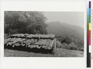 Old Yurok plank house