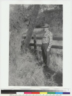"""View of """"Ishi Site;"""" man in checkered shirt standing by bush and fence"""