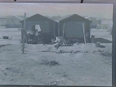Cotton Camps