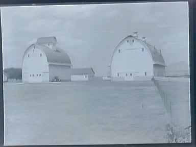 Iowa Barns