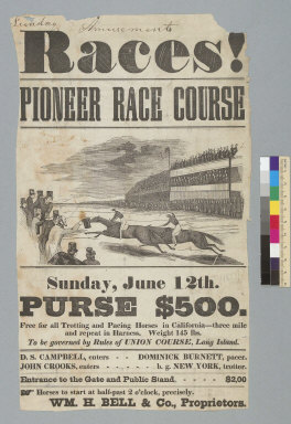 Races! Pioneer race course