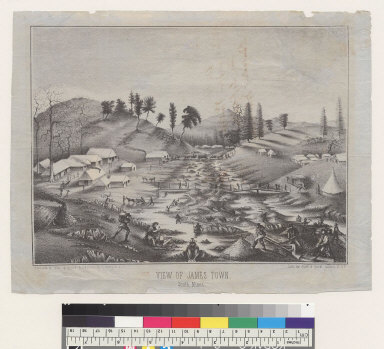 View of James Town, south mines [California]